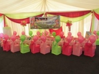 Monkey Magic green and pink themed party table and chairs