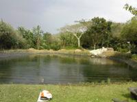 wilcote_lake
