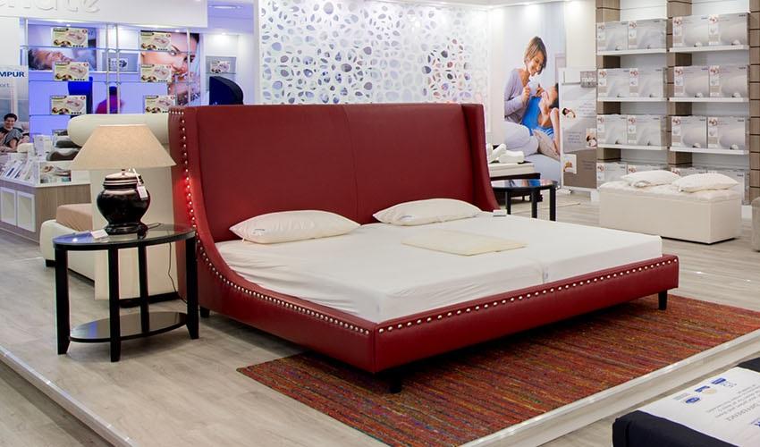 Vencasa Bed and Mattresses