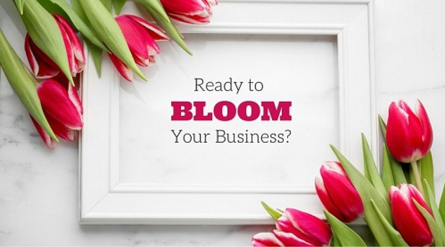 Spring: Time to Grow your Business!