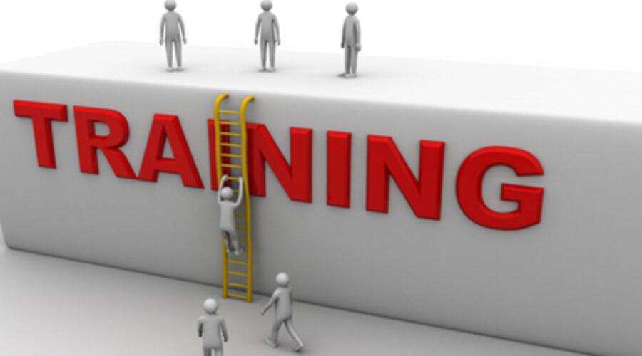 Training Support You Can Expect From Your Franchisor